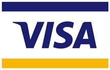 pagos con visa